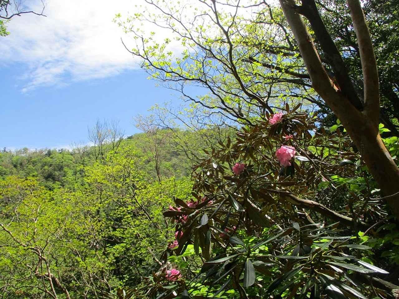画像3: 来年の宿泊ツアーの企画素材を探して奈良県の大峰山に行ってきました!