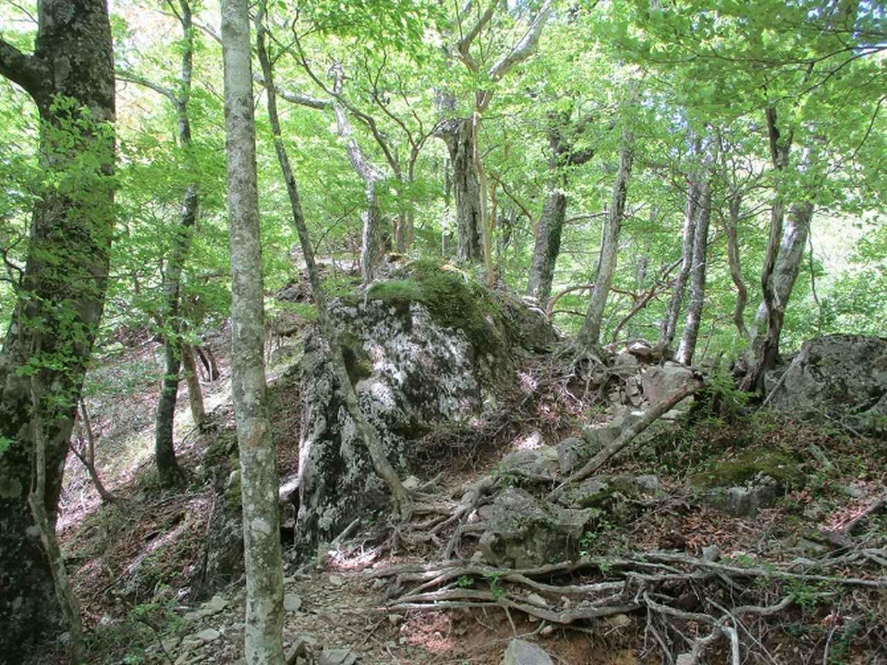 画像2: 来年の宿泊ツアーの企画素材を探して奈良県の大峰山に行ってきました!