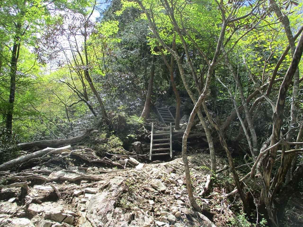 画像4: 来年の宿泊ツアーの企画素材を探して奈良県の大峰山に行ってきました!