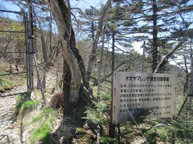 画像12: 来年の宿泊ツアーの企画素材を探して奈良県の大峰山に行ってきました!