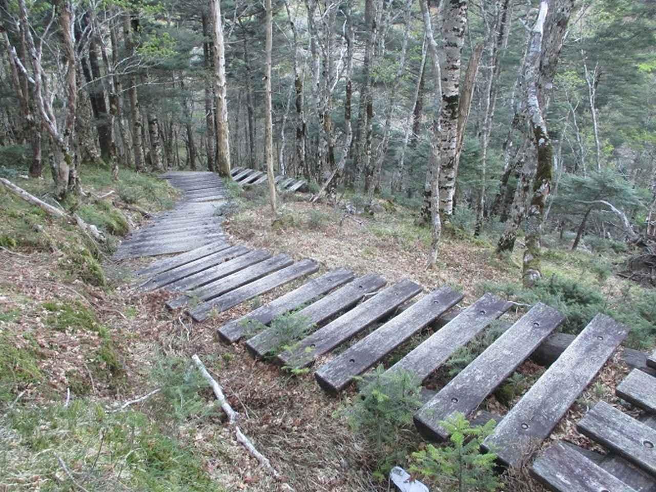 画像5: 来年の宿泊ツアーの企画の素材を探して奈良県の大峰山に行ってきました!