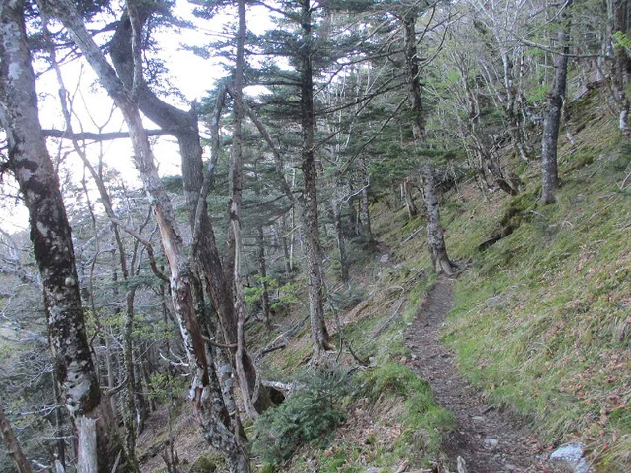 画像7: 来年の宿泊ツアーの企画の素材を探して奈良県の大峰山に行ってきました!