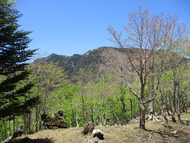 画像6: 来年の宿泊ツアーの企画素材を探して奈良県の大峰山に行ってきました!