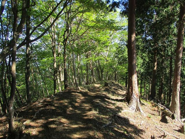 画像9: 来年の宿泊ツアーの企画の素材を探して奈良県の大峰山に行ってきました!
