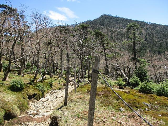 画像11: 来年の宿泊ツアーの企画素材を探して奈良県の大峰山に行ってきました!