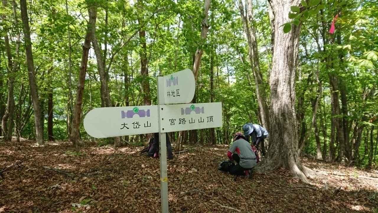画像6: 5月19日に荻野ガイドのコースで 宮地山~セーメーバン へ行って来ました♪