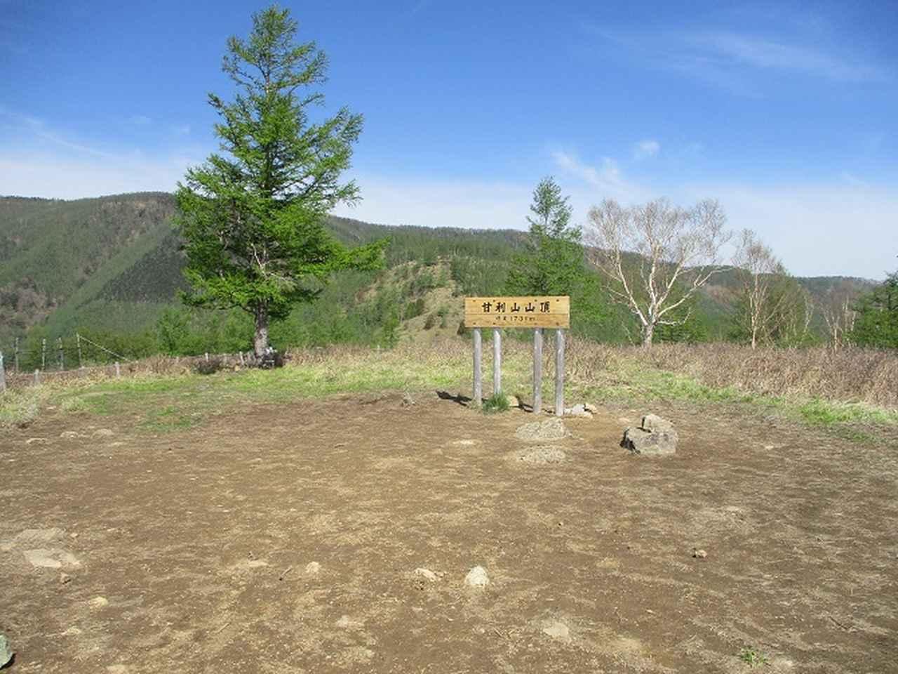 画像7: 6月の山旅会 「甘利山」 の下見にいってきました!