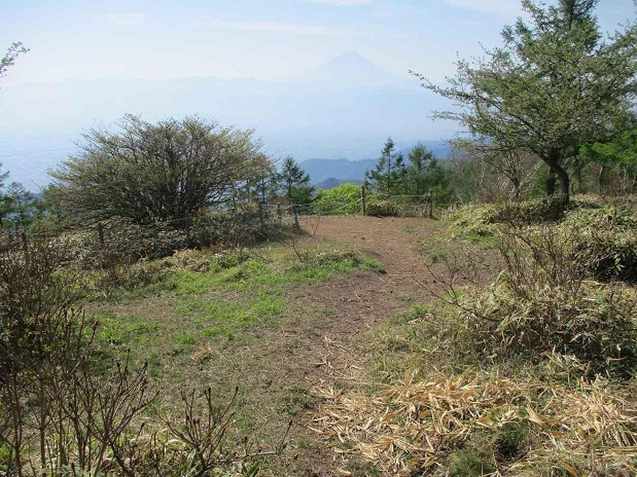 画像3: 6月の山旅会 「甘利山」 の下見にいってきました!