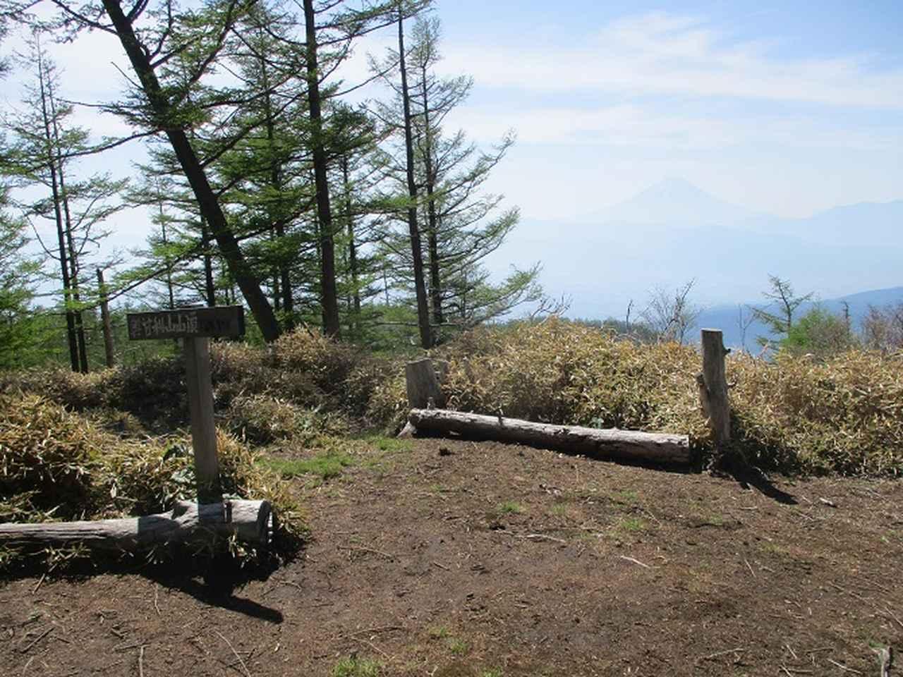 画像10: 6月の山旅会 「甘利山」 の下見にいってきました!