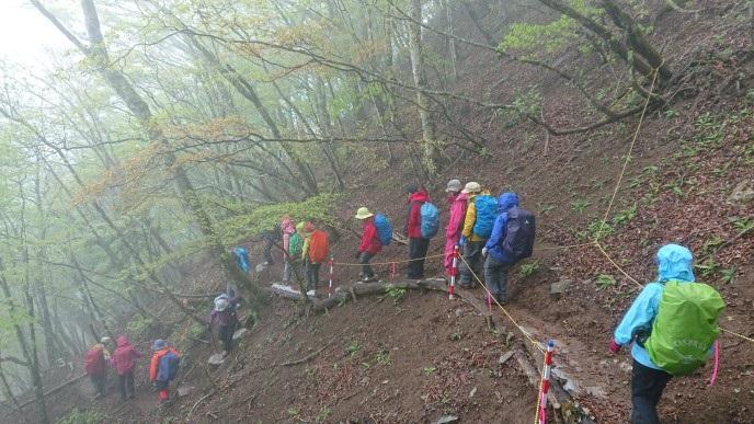 画像8: 5月20日に佐藤威行ガイドのツアーで、 大室山~加入道山 へ行って来ました♪