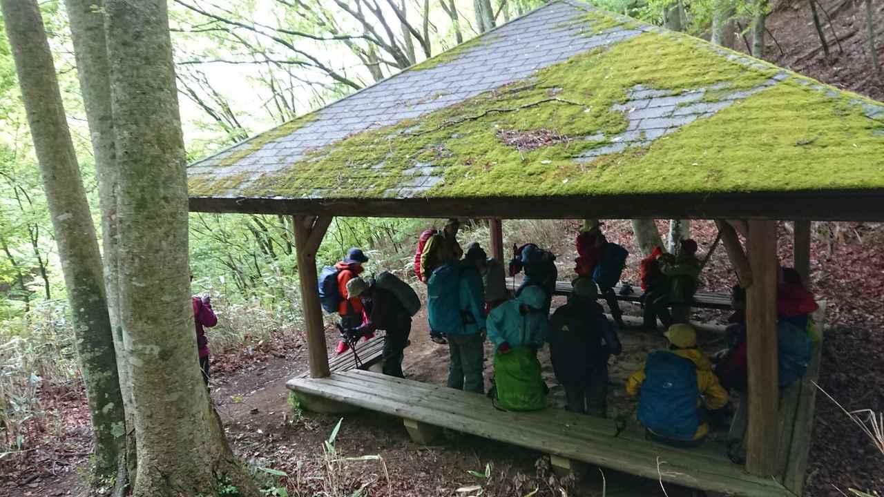 画像11: 5月20日に佐藤威行ガイドのツアーで、 大室山~加入道山 へ行って来ました♪