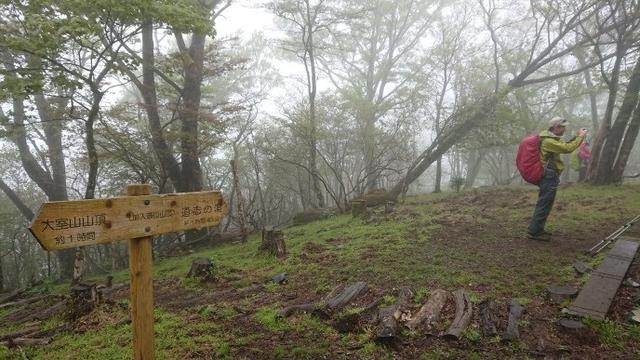 画像7: 5月20日に佐藤威行ガイドのツアーで、 大室山~加入道山 へ行って来ました♪