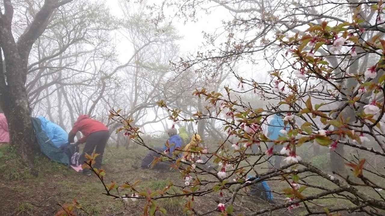 画像4: 5月20日に佐藤威行ガイドのツアーで、 大室山~加入道山 へ行って来ました♪