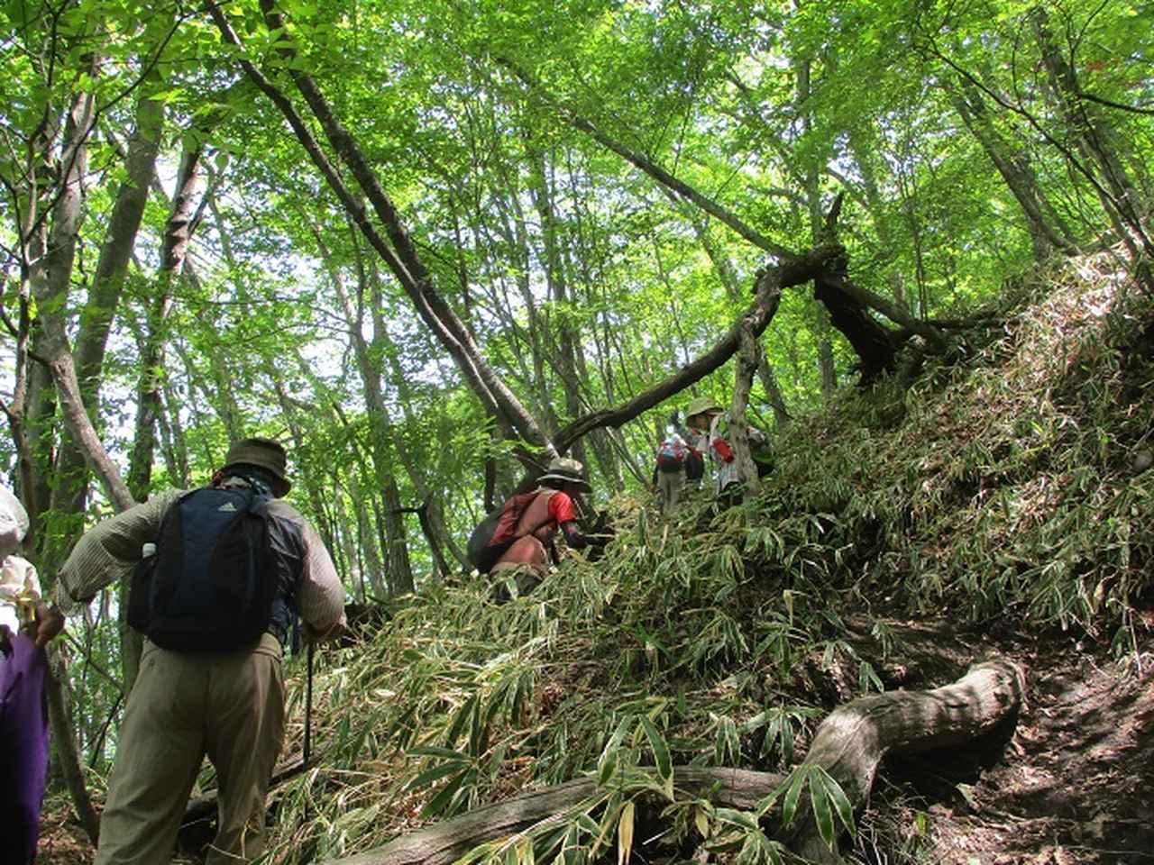 画像4: 5月27日に山旅会 「榛名富士」 ツアーにいってきました!