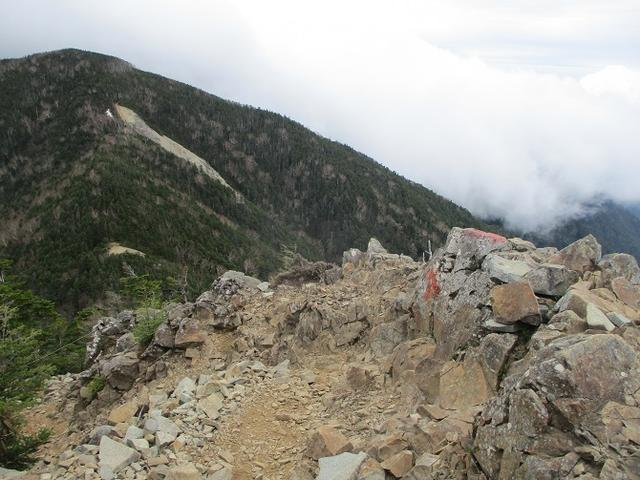 画像11: 6月の山旅会 「甲武信ヶ岳」 ツアーの下見に行ってきました!