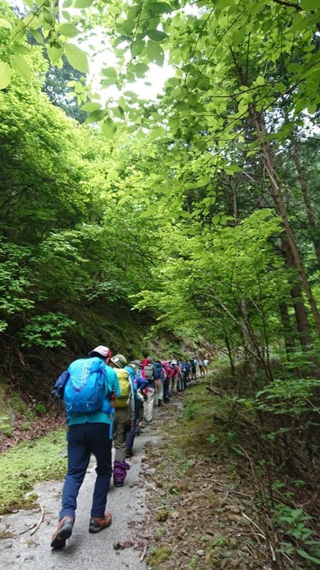 画像1: 6月2日に宮下ガイドの秀麗富岳十二景シリーズ第10回で 雁ヶ腹摺山 へ行ってきました♪