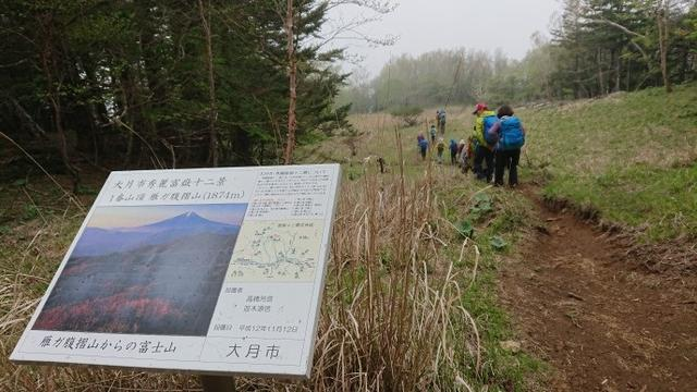 画像12: 6月2日に宮下ガイドの秀麗富岳十二景シリーズ第10回で 雁ヶ腹摺山 へ行ってきました♪