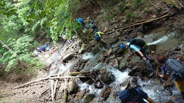 画像5: 6月2日に宮下ガイドの秀麗富岳十二景シリーズ第10回で 雁ヶ腹摺山 へ行ってきました♪