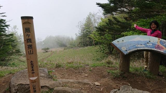 画像11: 6月2日に宮下ガイドの秀麗富岳十二景シリーズ第10回で 雁ヶ腹摺山 へ行ってきました♪