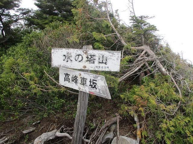画像5: 6月の山旅会 「水ノ塔山から東篭ノ登山」 ツアーの下見に行ってきました!