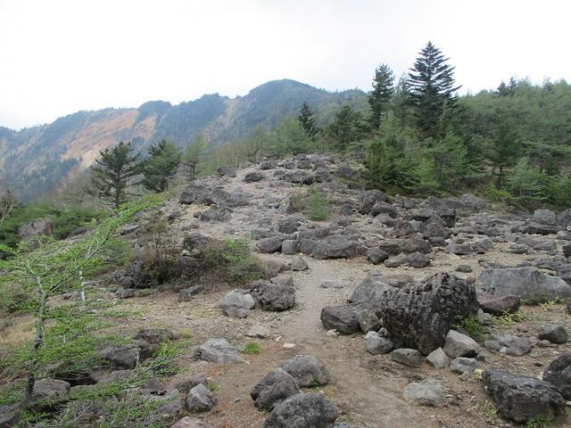 画像2: 6月の山旅会 「水ノ塔山から東篭ノ登山」 ツアーの下見に行ってきました!