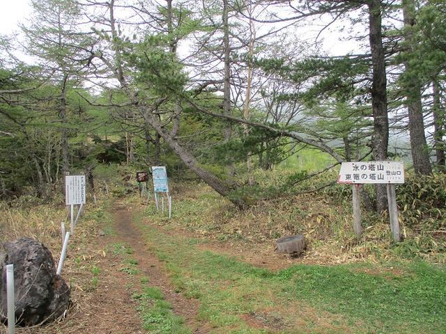 画像1: 6月の山旅会 「水ノ塔山から東篭ノ登山」 ツアーの下見に行ってきました!