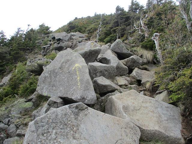 画像4: 6月の山旅会 「水ノ塔山から東篭ノ登山」 ツアーの下見に行ってきました!