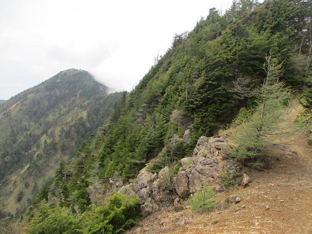 画像6: 6月の山旅会 「水ノ塔山から東篭ノ登山」 ツアーの下見に行ってきました!