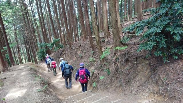 画像9: 本日は 大和葛城山 ツアー のご報告です♪