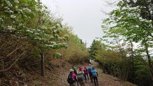 画像7: 本日は和歌山県の最高峰・ 龍神岳 ツアーのご報告です♪