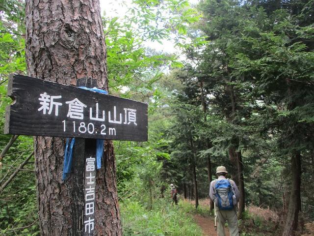 画像14: 岡田ガイドのハイキングコースで山梨県の 新倉山 へ行ってきました♪