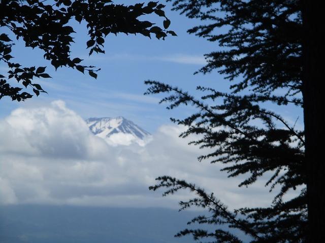 画像15: 岡田ガイドのハイキングコースで山梨県の 新倉山 へ行ってきました♪