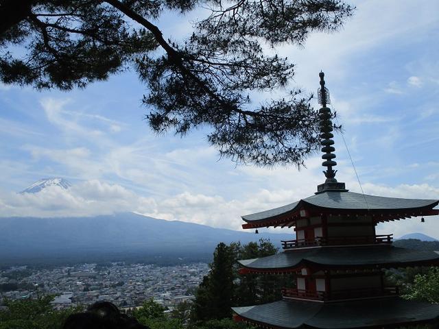 画像20: 岡田ガイドのハイキングコースで山梨県の 新倉山 へ行ってきました♪