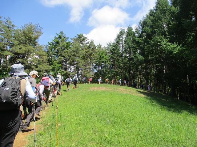 画像8: 岡田ガイドのハイキングコースで山梨県の 新倉山 へ行ってきました♪