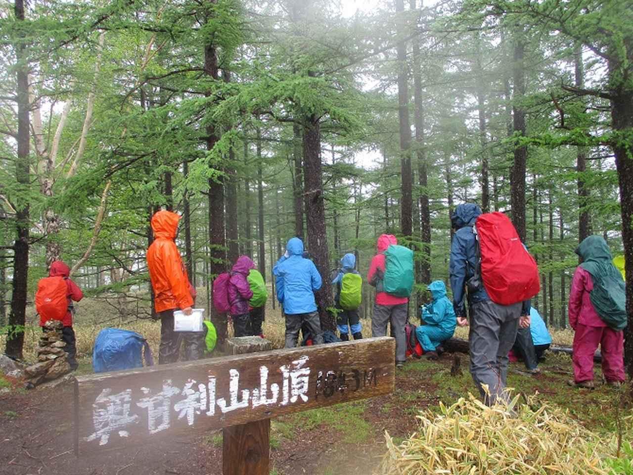 画像12: 岡田ガイドのコースで、山梨県のツツジで有名な 甘利山 へ行ってきました♪