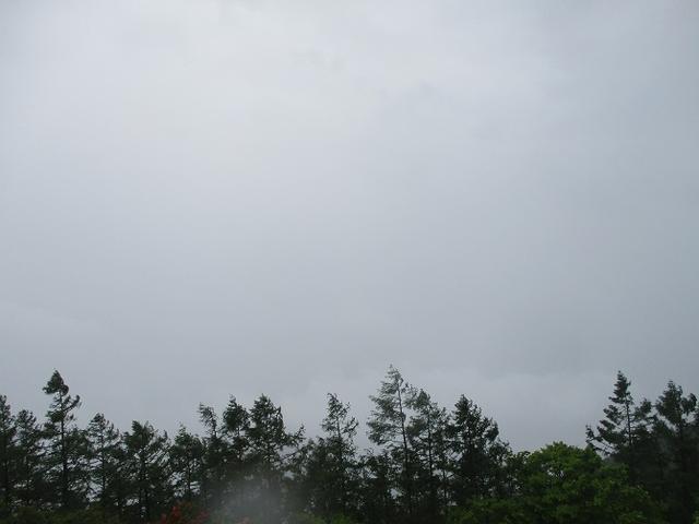 画像5: 岡田ガイドのコースで、山梨県のツツジで有名な 甘利山 へ行ってきました♪