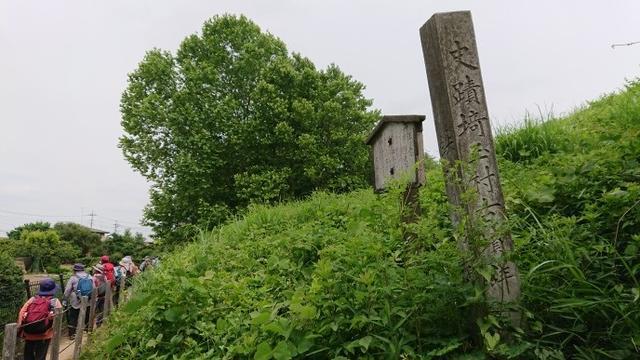 画像12: 穂苅先生のコースで、 さきたま古墳と古代蓮の里 へ久々の親子コンビで行って来ました♪