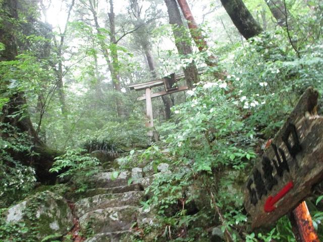 画像8: 5月28日から3日間で四国の名峰 「石鎚山と剣山」 にいってきました!