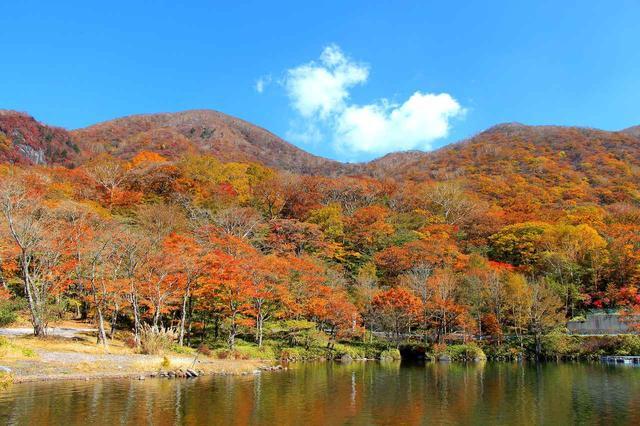 画像: 【第2回】上毛三山のひとつ・赤城山の紅葉