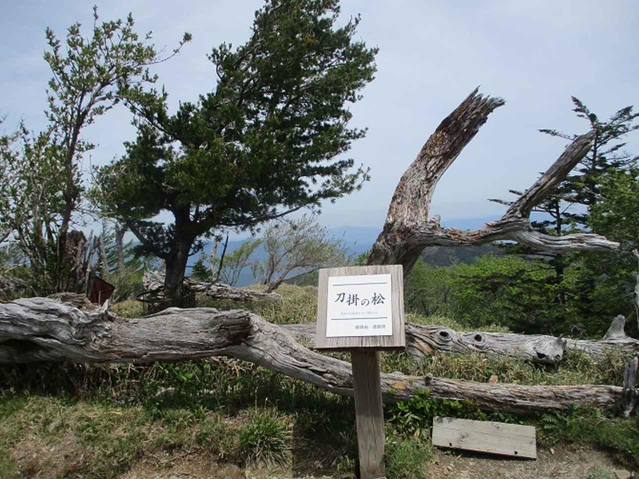 画像4: 5月28日より2泊3日で山旅会 「石鎚山と剣山」 ツアーに行ってきました!