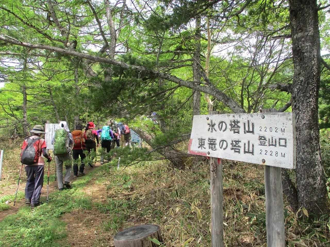 画像1: 【山旅会・登山ガイドこだわりツアー】添乗員からの便り・水ノ塔山から東篭ノ登山ツアーに行ってきました!