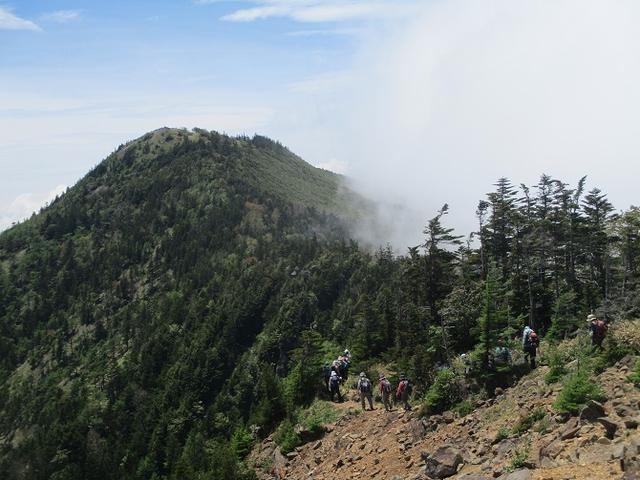 画像7: 【山旅会・登山ガイドこだわりツアー】添乗員からの便り・水ノ塔山から東篭ノ登山ツアーに行ってきました!