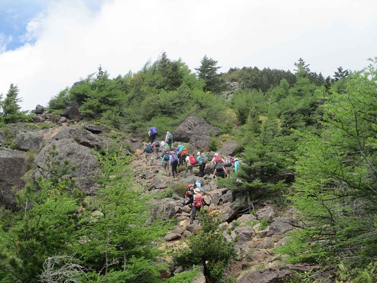 画像5: 【山旅会・登山ガイドこだわりツアー】添乗員からの便り・水ノ塔山から東篭ノ登山ツアーに行ってきました!