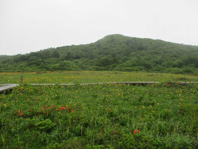 画像3: 6月24日より山旅会 「雄国沼と西吾妻山」 ツアーに行ってきました!