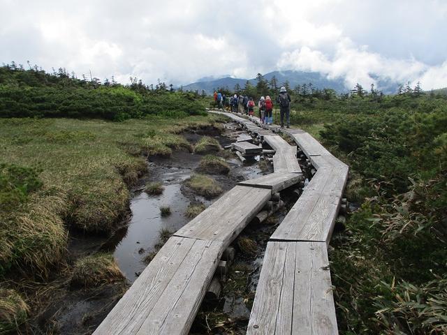 画像3: 6月24日より 「雄国沼と西吾妻山」 ツアーに行ってきました!