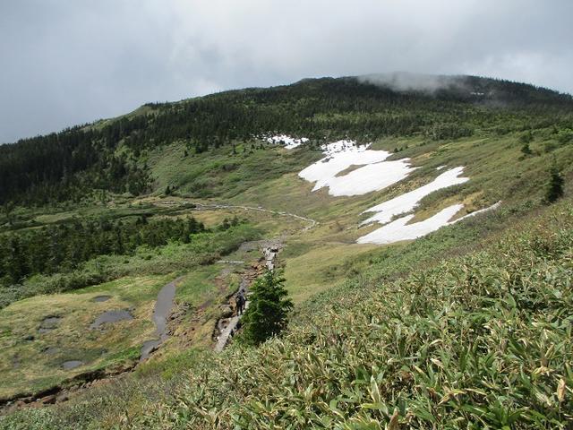 画像8: 6月24日より 「雄国沼と西吾妻山」 ツアーに行ってきました!