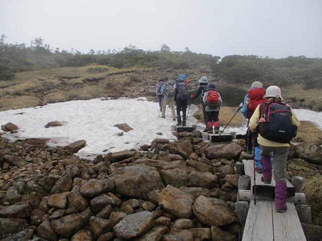 画像10: 6月24日より 「雄国沼と西吾妻山」 ツアーに行ってきました!