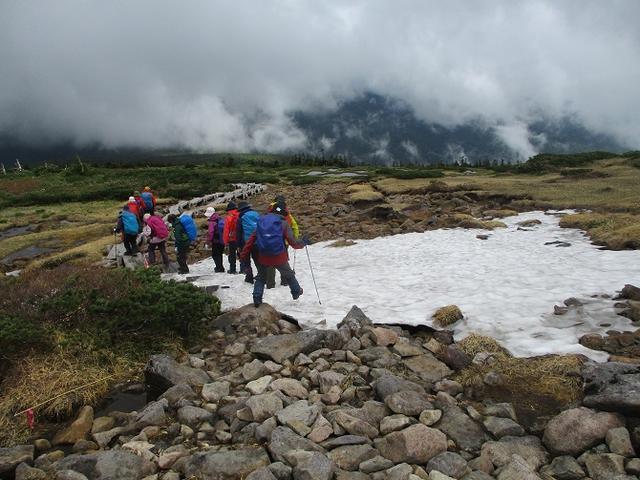 画像14: 6月24日より 「雄国沼と西吾妻山」 ツアーに行ってきました!