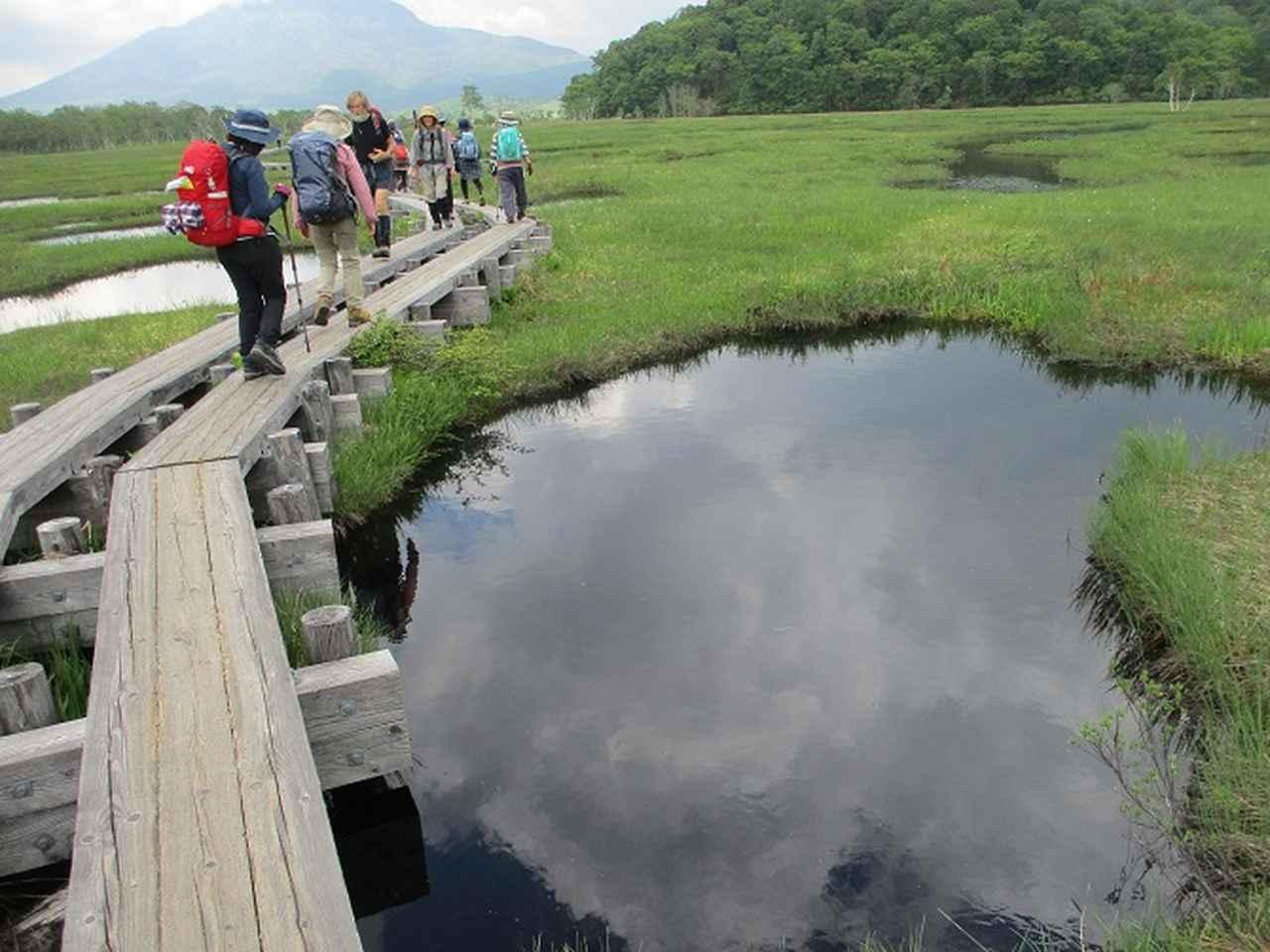 画像14: 6月20日・21日に岡田ガイドのコースで 尾瀬 へ行ってきました♪