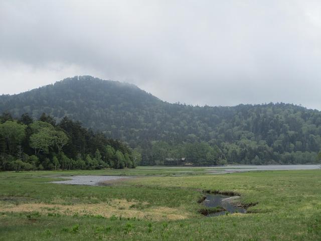 画像9: 6月20日から山旅会 「尾瀬ヶ原から尾瀬沼」 ツアーに行ってきました!